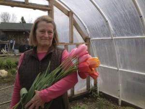 chambliss and tulips