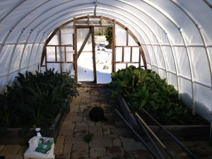 in hoop house