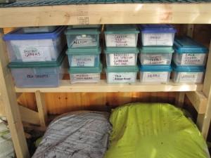 organized seeds