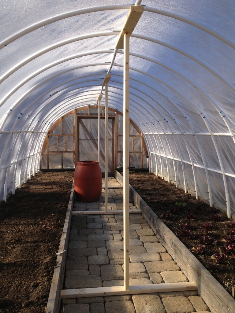 Hoophouse Supports Hedgerow